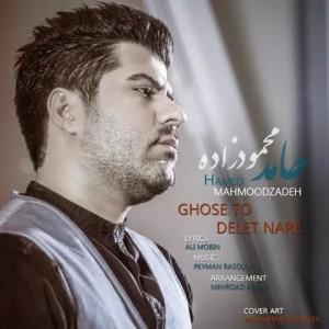 hamed-mahmoodzadeh-ghose-toye-delet