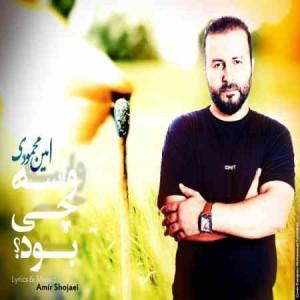 Amin Mahmoudi - Vase Chi Bood