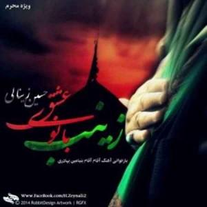Hossein-Zeynali-Zeinab-Banoye-Esghe