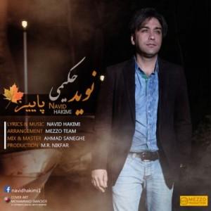 Navid Hakimi Fall