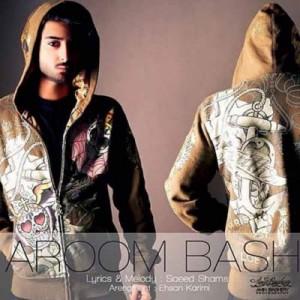 Saeed-Shams-Aroom-Bash