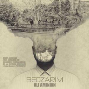 Ali-Aminian-Begzarim