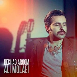 Ali-Molaei-Bekhab-Aroom