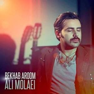 Ali-Molaei-Bekhab-Aroom