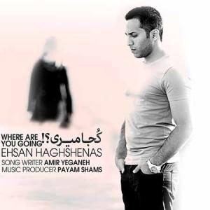 Ehsan-Haghshenas---Koja-Miri