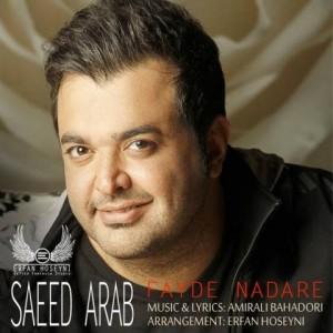 saeed-arab-fayde-nadare-remix