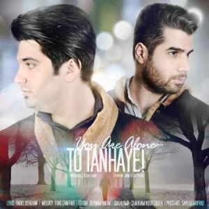 Shahin-Jamshidpour-To Tanhayi