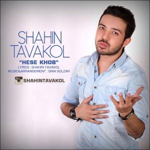 Shahin Tavakol - Hesse Khob