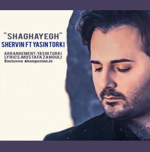 Shervin Shaghayegh