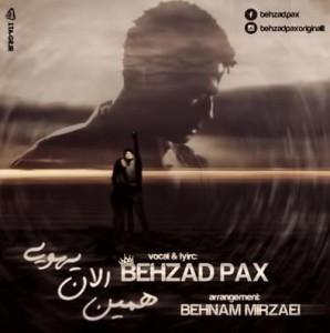 Behzad-Pax-Hamin-Alan-Yehoei