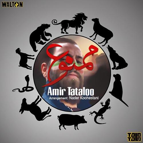Amir-Tataloo-Mamnoo