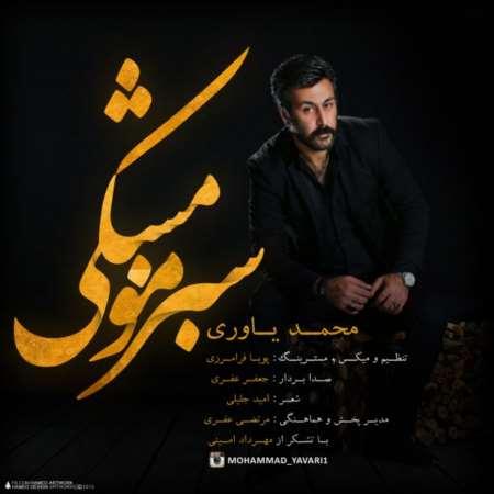 Mohammad-Yavari-Sabze-Moo-Meshk
