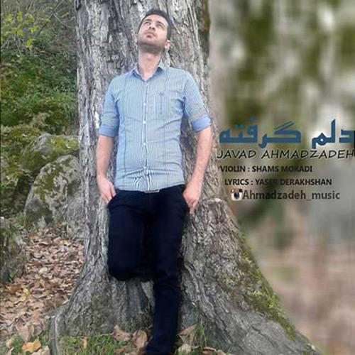 Javad-Ahmadzadeh---Delm-Gerfteh