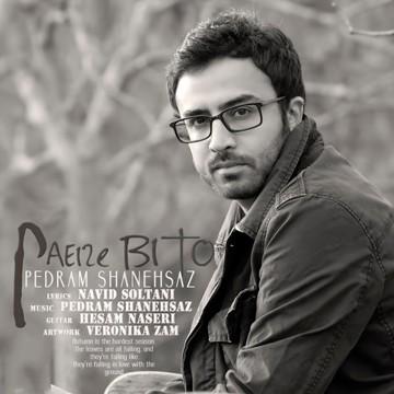Pedram Shanehsaz - Paeize BiTo