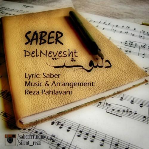 Saber - Delnevesht