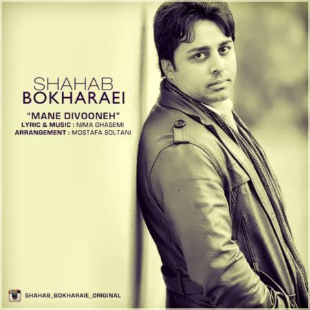 Shahab-Bokharaei-Dele-Divoone