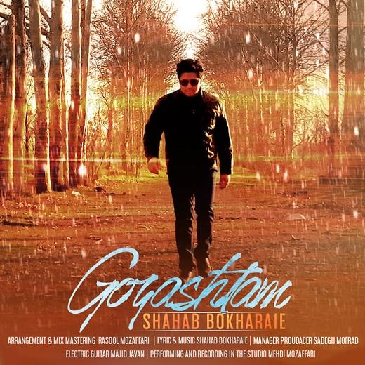 Shahab Bokharaei - Gozashtam