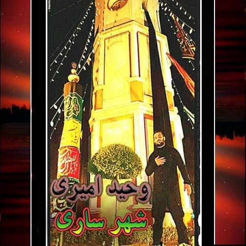 Vahid Amiri - Shahram Sari