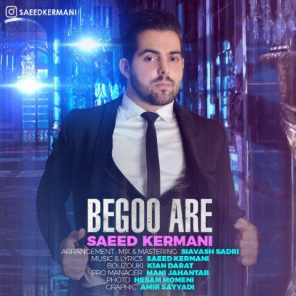 Saeed Kermani - Begoo Are
