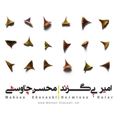 Mohsen Chavoshi - Amire Bi Gazand