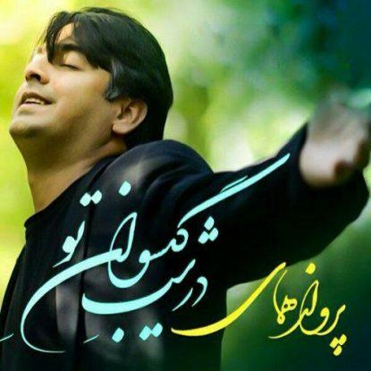 Parvaz Homay - Dar Shabe Gisovan to