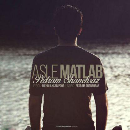 Pedram Shanehsaz - Asle Matlab