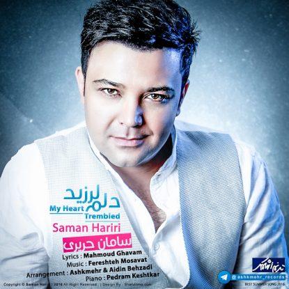 Saman Hariri - Delam Larzid