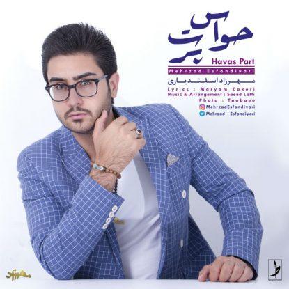 Mehrzad Esfandiyari - Havas Part