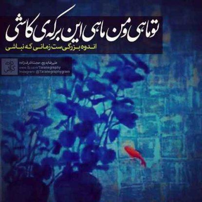 hojat-ashrafzadeh-mah-mahie