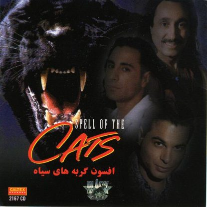 black-cats-aroosak