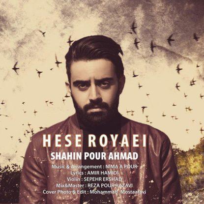 shahin-pour-ahmad-hese-royaei