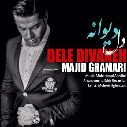 majid-ghamari-dele-divaneh