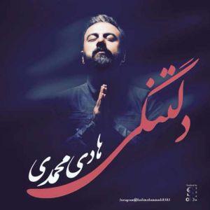 هادی محمدی دلتنگی