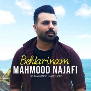 محمود نجفی بهترینم