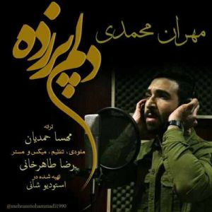 مهران محمدى دلم پر زده