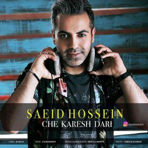 سعید حسین چه کارش داری