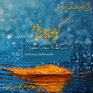 سیاوش محمودی کوچه ی بارون زده