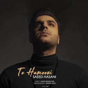 سعید حسنی تو همونی